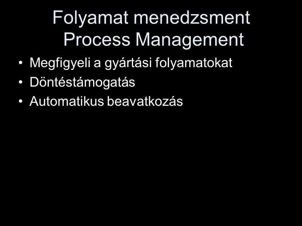 Folyamat menedzsment Process Management