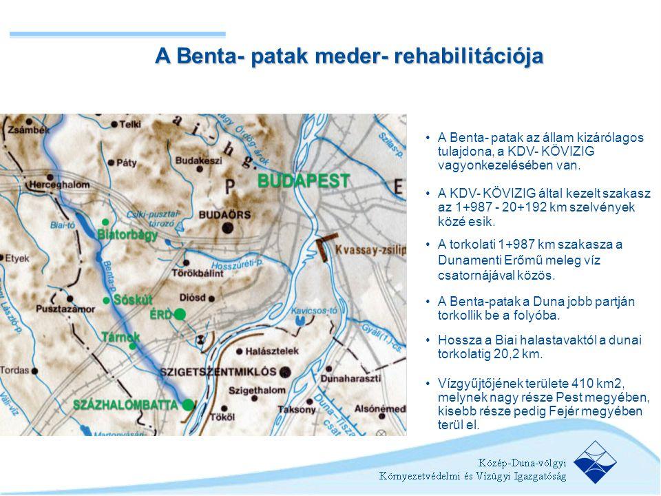 A Benta- patak meder- rehabilitációja