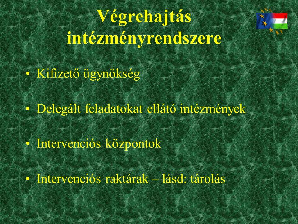 Végrehajtás intézményrendszere