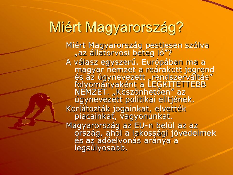 """Miért Magyarország Miért Magyarország pestiesen szólva """"az állatorvosi beteg ló"""