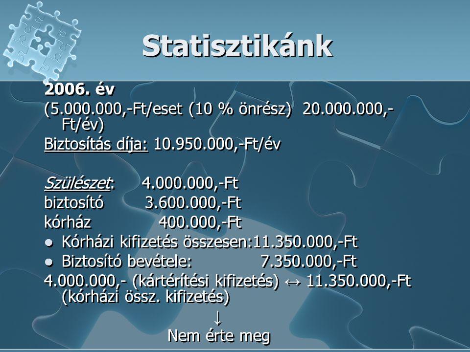 Statisztikánk 2006. év. (5.000.000,-Ft/eset (10 % önrész) 20.000.000,-Ft/év) Biztosítás díja: 10.950.000,-Ft/év.