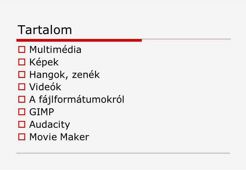 Tartalom Multimédia Képek Hangok, zenék Videók A fájlformátumokról