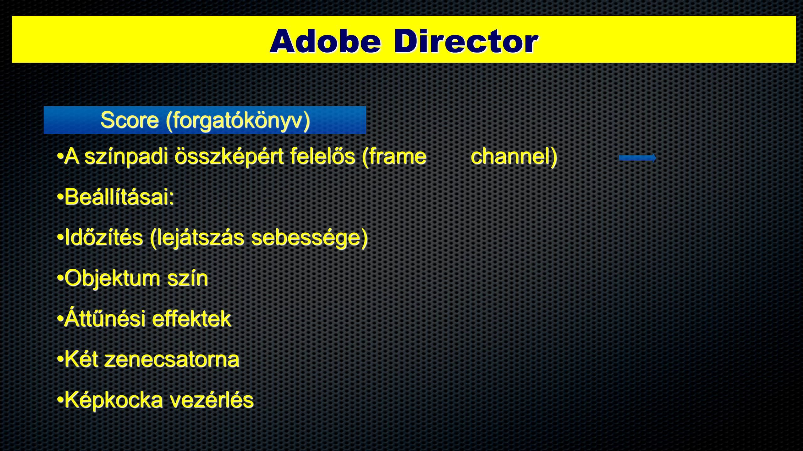 Adobe Director Score (forgatókönyv)