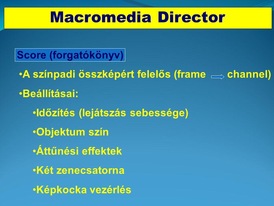 Macromedia Director Score (forgatókönyv)