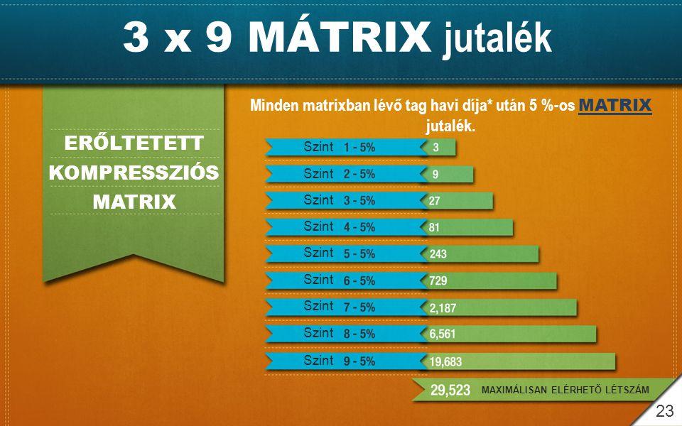 Minden matrixban lévő tag havi díja* után 5 %-os MATRIX jutalék.