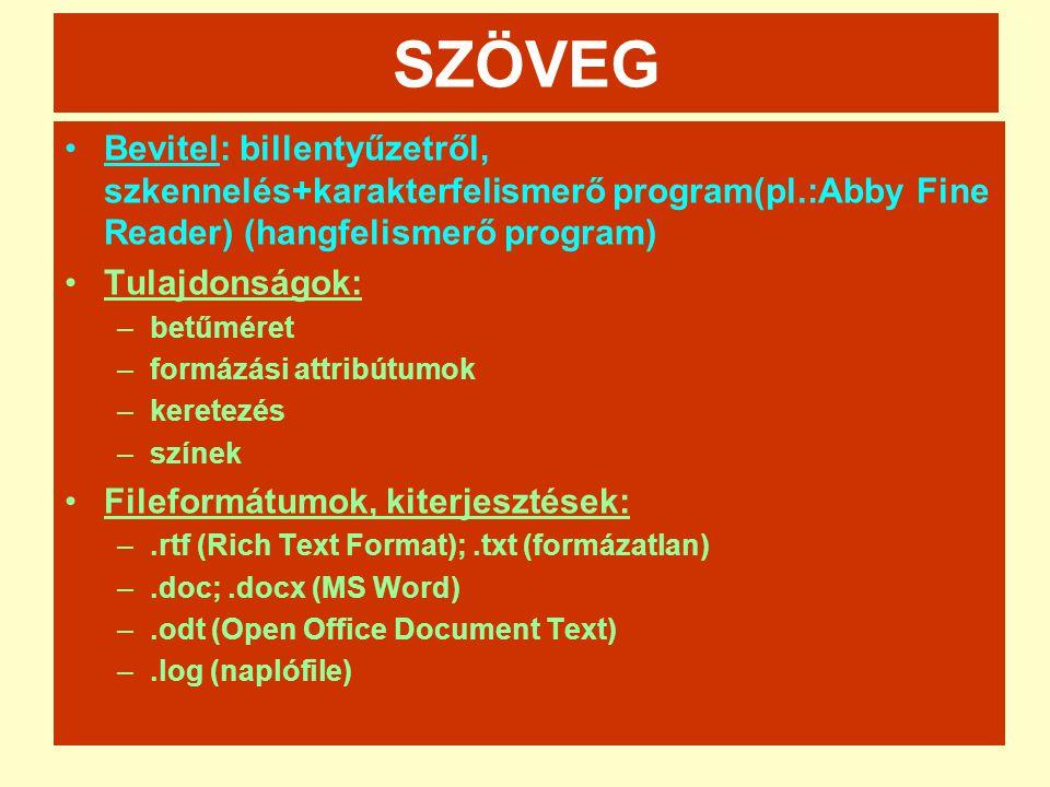 SZÖVEG Bevitel: billentyűzetről, szkennelés+karakterfelismerő program(pl.:Abby Fine Reader) (hangfelismerő program)