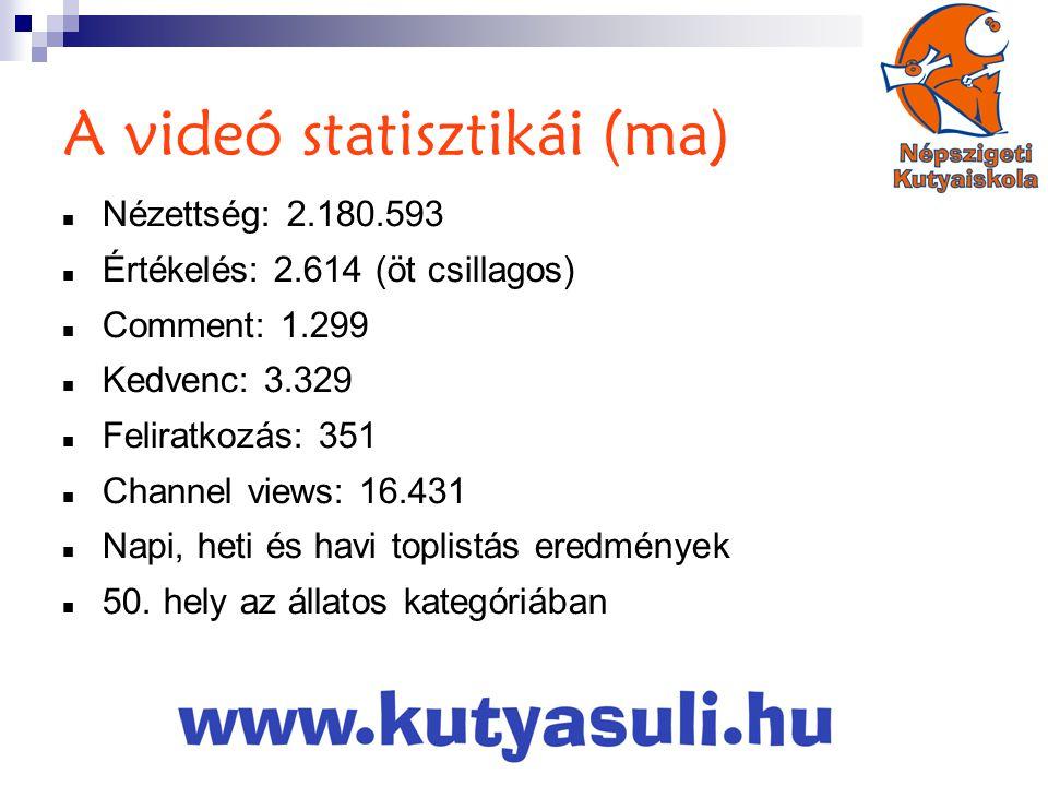 A videó statisztikái (ma)