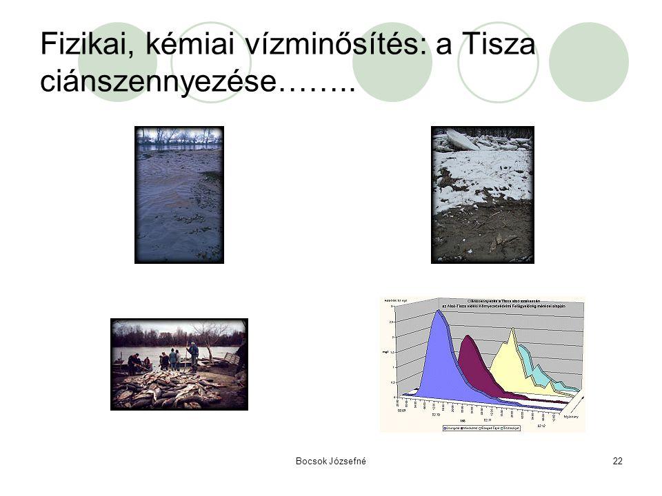 Fizikai, kémiai vízminősítés: a Tisza ciánszennyezése……..