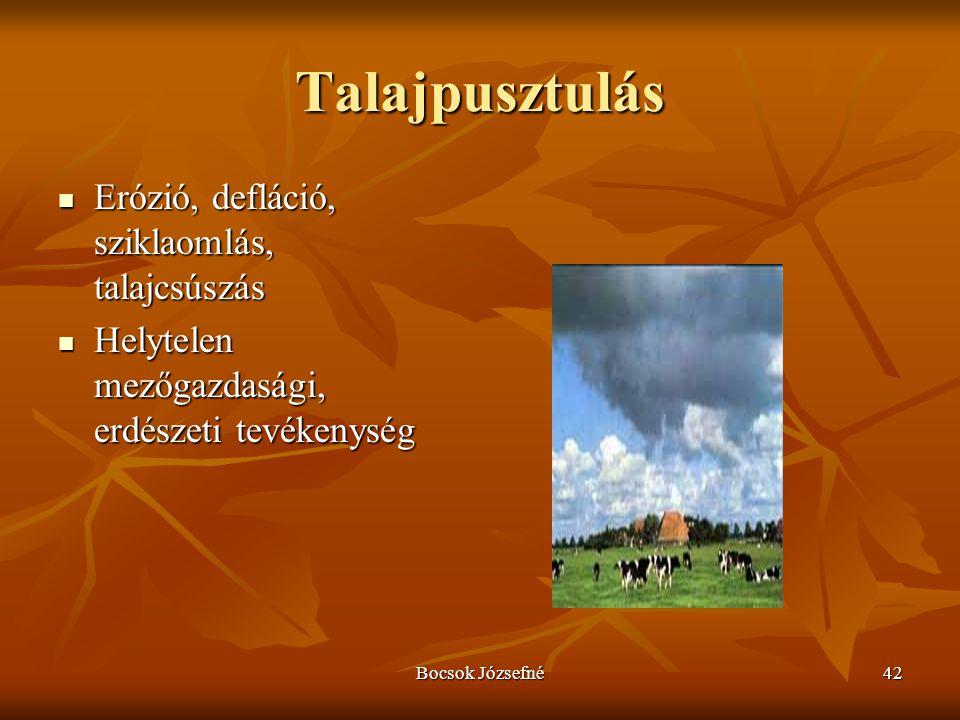 Talajpusztulás Erózió, defláció, sziklaomlás, talajcsúszás
