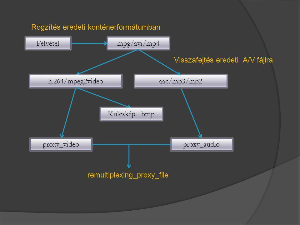 Rögzítés eredeti konténerformátumban