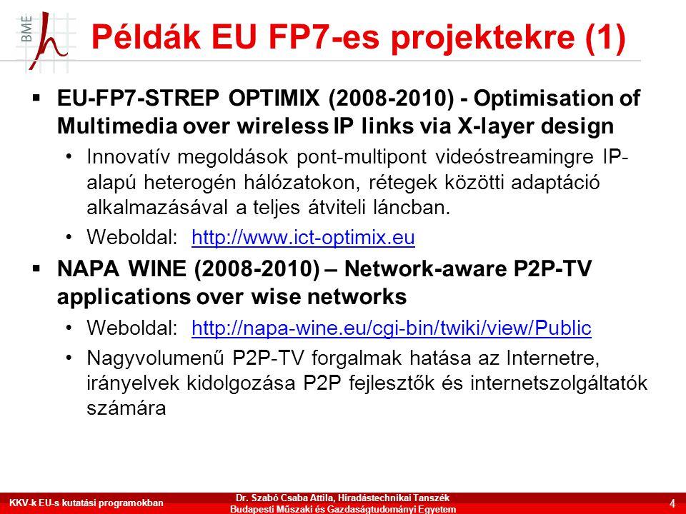 Példák EU FP7-es projektekre (1)