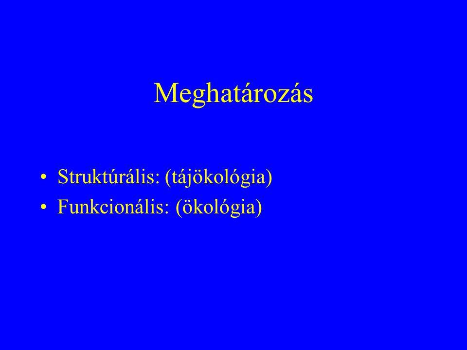 Meghatározás Struktúrális: (tájökológia) Funkcionális: (ökológia)