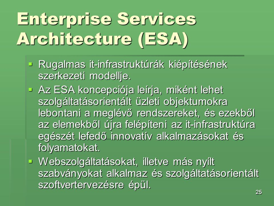 Enterprise Services Architecture (ESA)