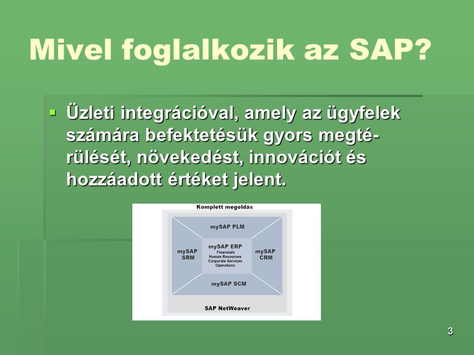 Mivel foglalkozik az SAP