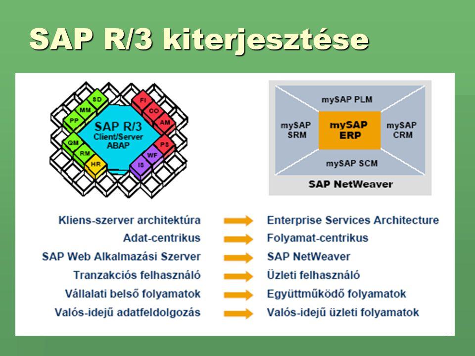 SAP R/3 kiterjesztése