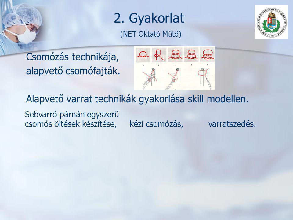 2. Gyakorlat (NET Oktató Műtő)