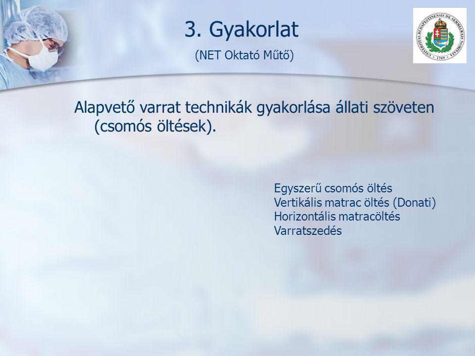 3. Gyakorlat (NET Oktató Műtő)