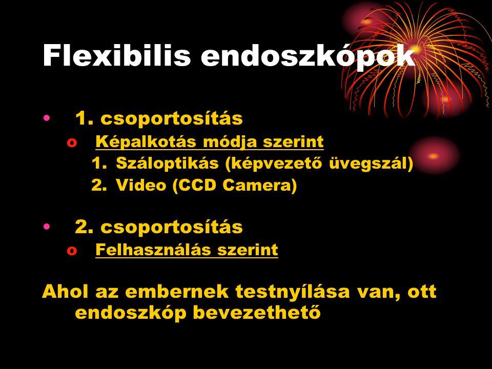 Flexibilis endoszkópok