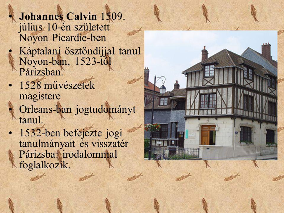 Johannes Calvin 1509. július 10-én született Noyon Picardie-ben
