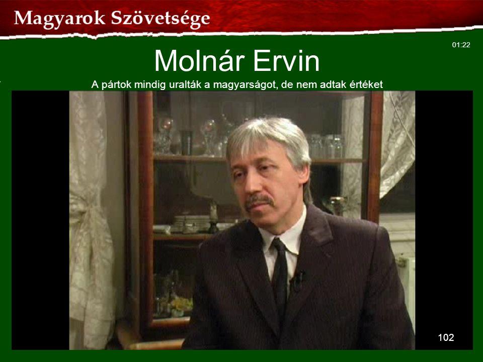 Molnár Ervin A pártok mindig uralták a magyarságot, de nem adtak értéket