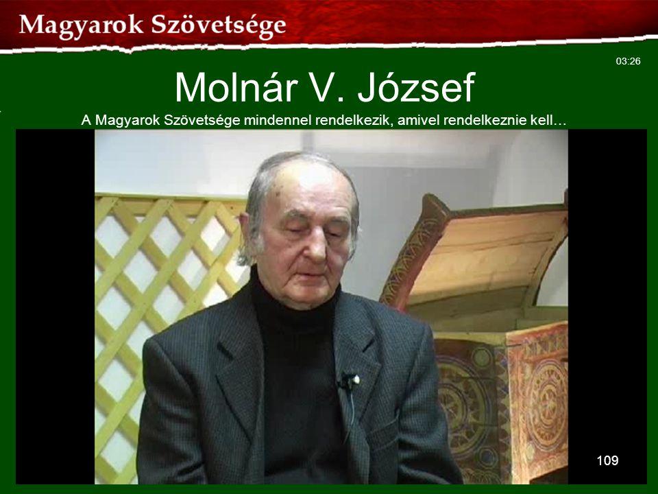 Molnár V. József A Magyarok Szövetsége mindennel rendelkezik, amivel rendelkeznie kell…