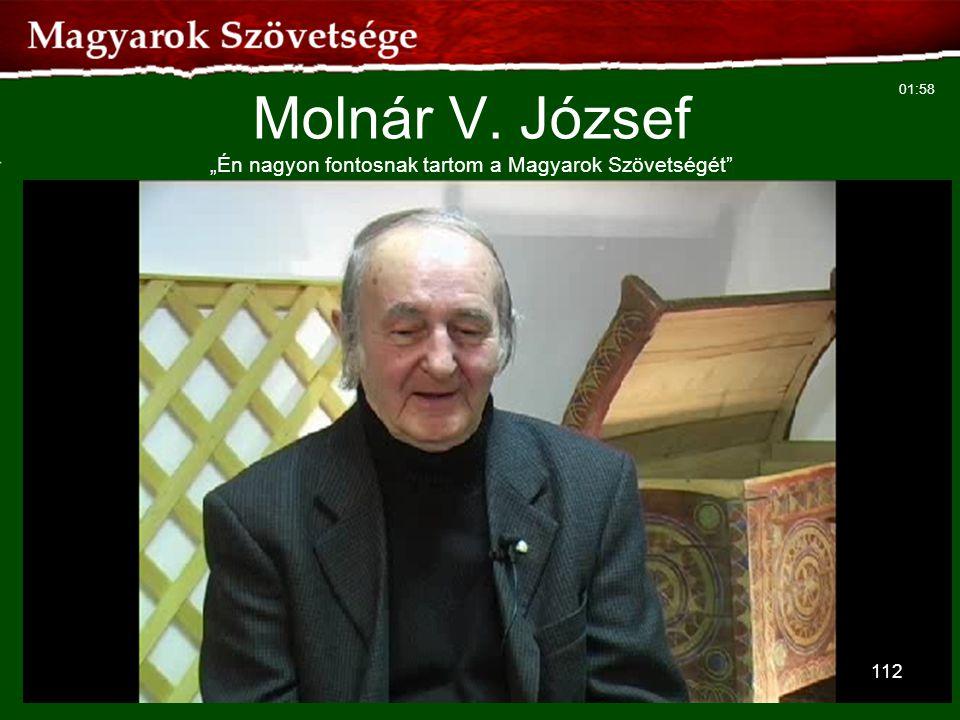 """Molnár V. József """"Én nagyon fontosnak tartom a Magyarok Szövetségét"""