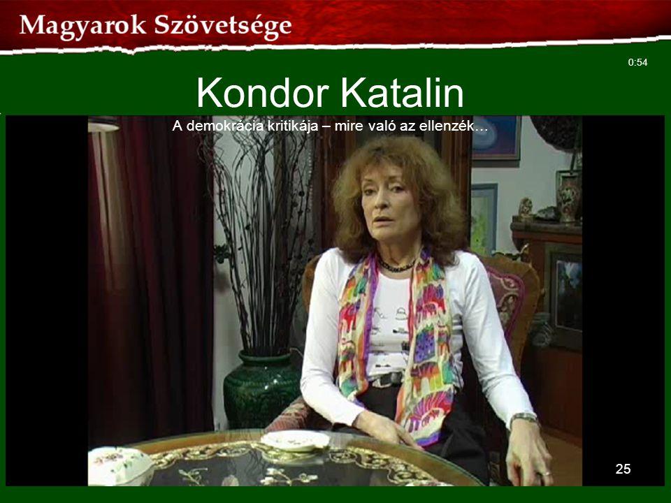 Kondor Katalin A demokrácia kritikája – mire való az ellenzék…