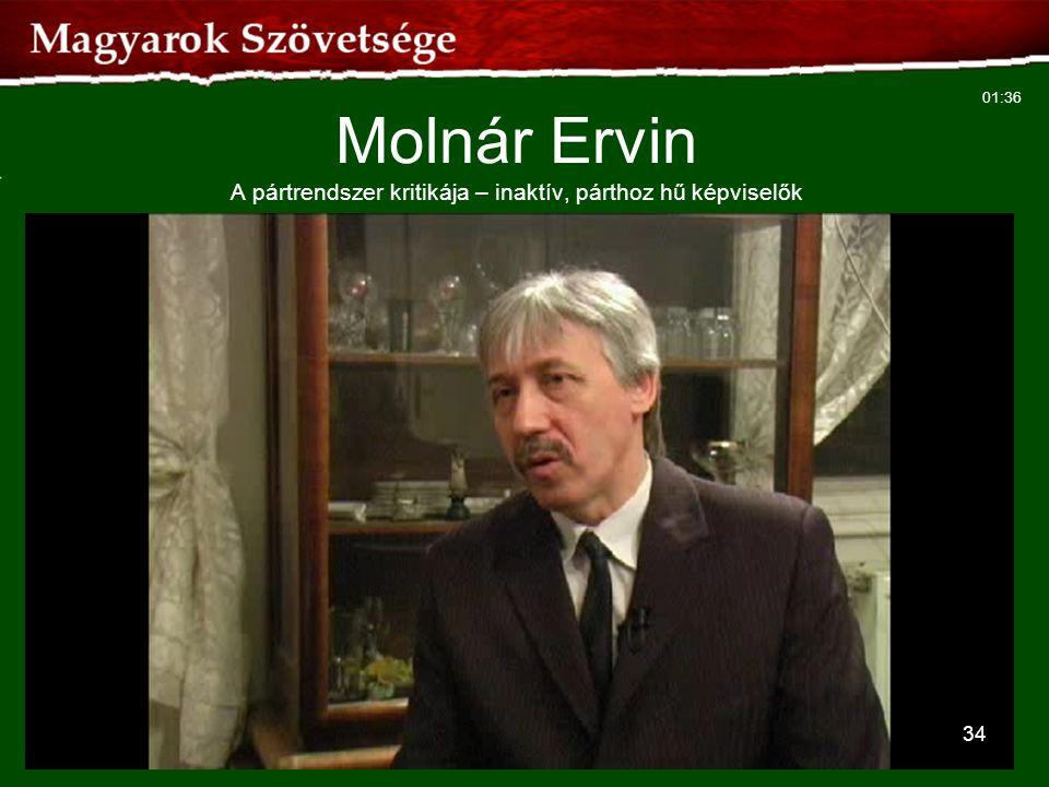 Molnár Ervin A pártrendszer kritikája – inaktív, párthoz hű képviselők