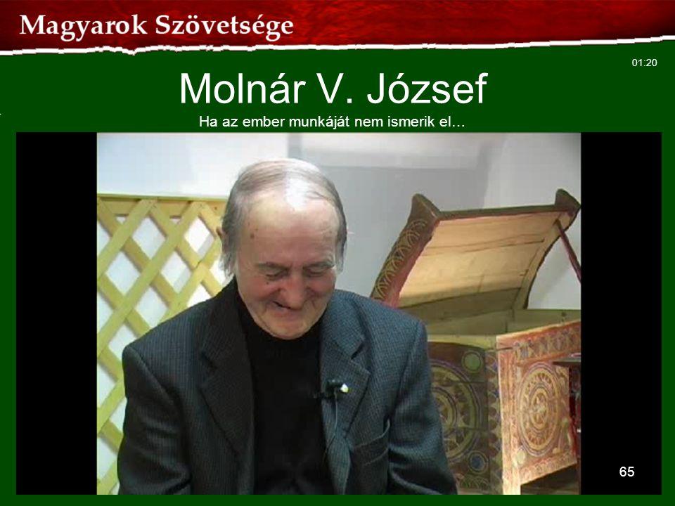 Molnár V. József Ha az ember munkáját nem ismerik el…