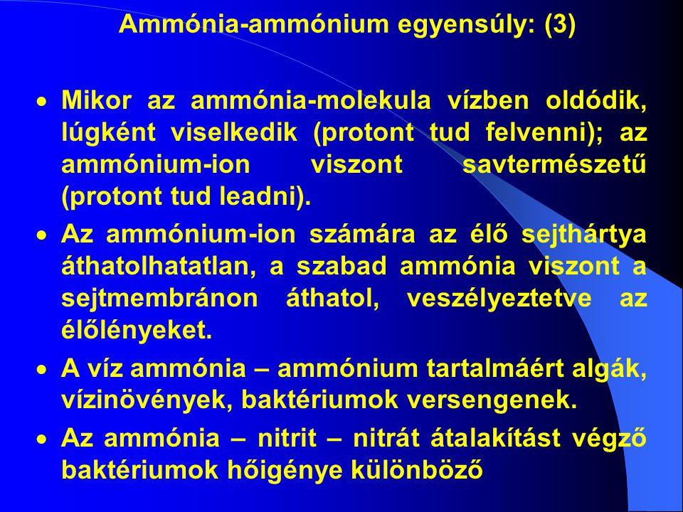 Ammónia-ammónium egyensúly: (3)