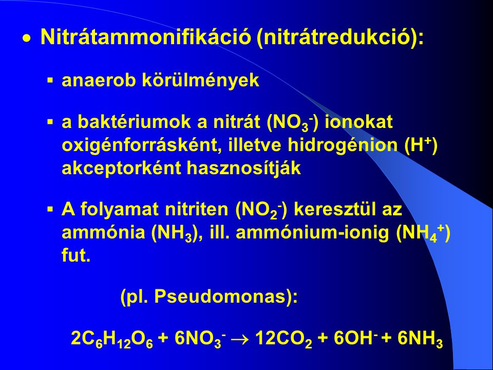Nitrátammonifikáció (nitrátredukció):