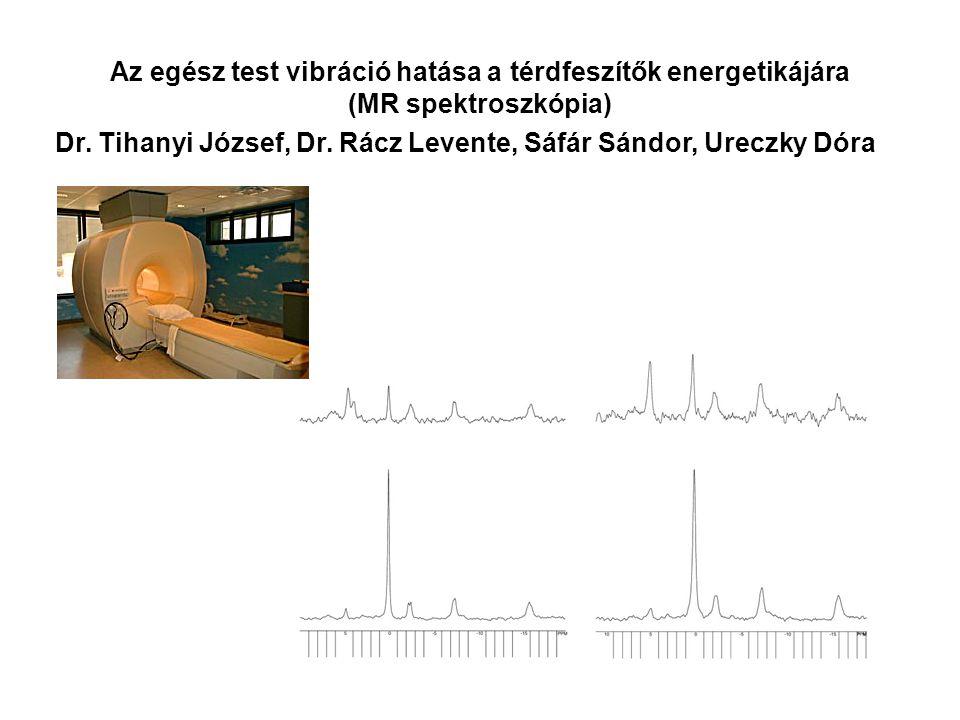 Az egész test vibráció hatása a térdfeszítők energetikájára (MR spektroszkópia)