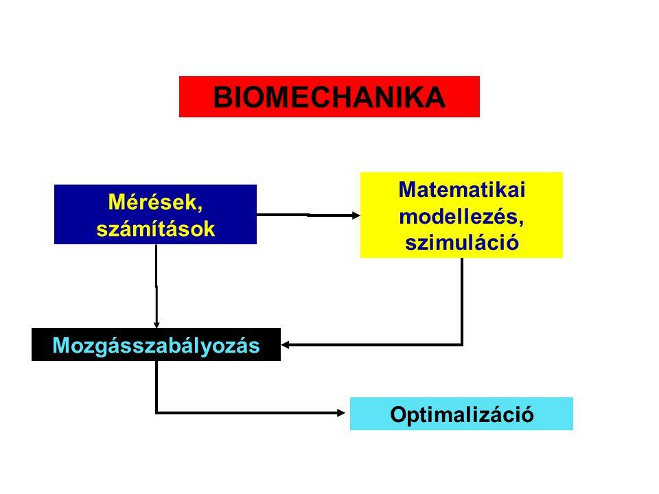 Matematikai modellezés, szimuláció