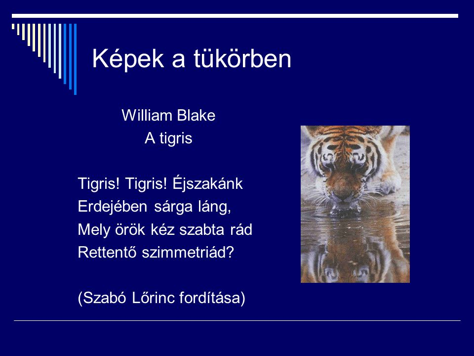 Képek a tükörben William Blake A tigris Tigris! Tigris! Éjszakánk