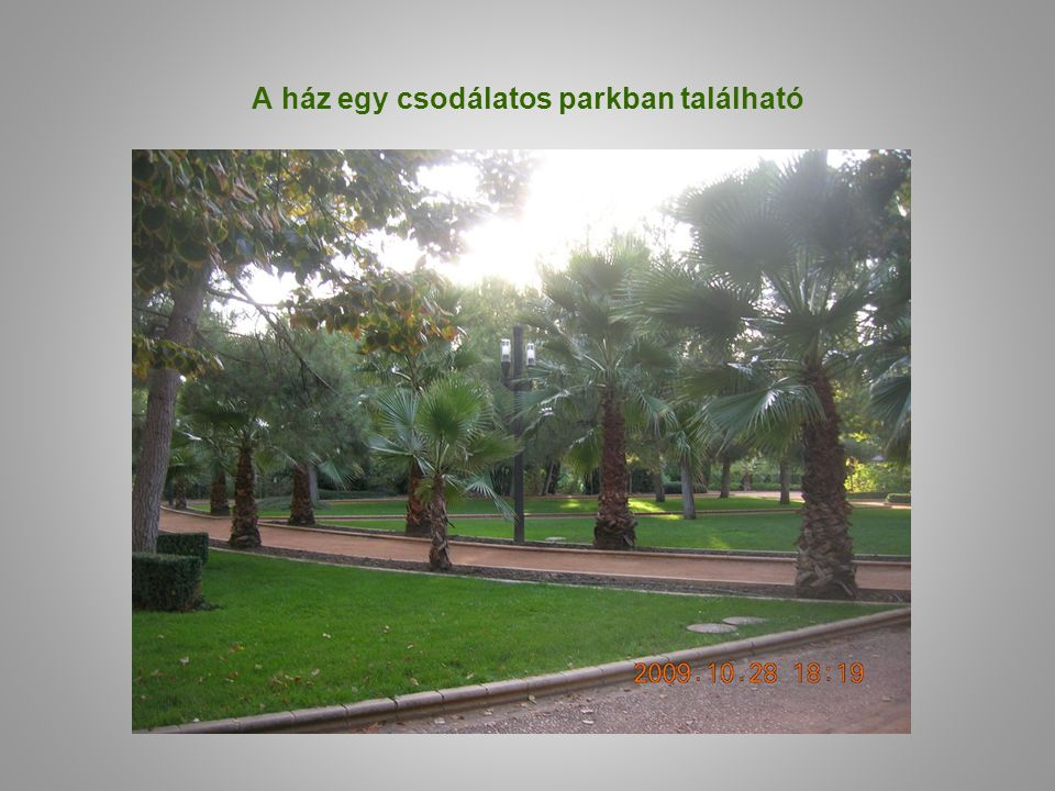 A ház egy csodálatos parkban található