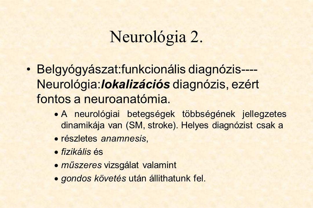 Neurológia 2. Belgyógyászat:funkcionális diagnózis----Neurológia:lokalizációs diagnózis, ezért fontos a neuroanatómia.