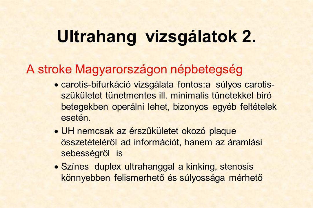 Ultrahang vizsgálatok 2.