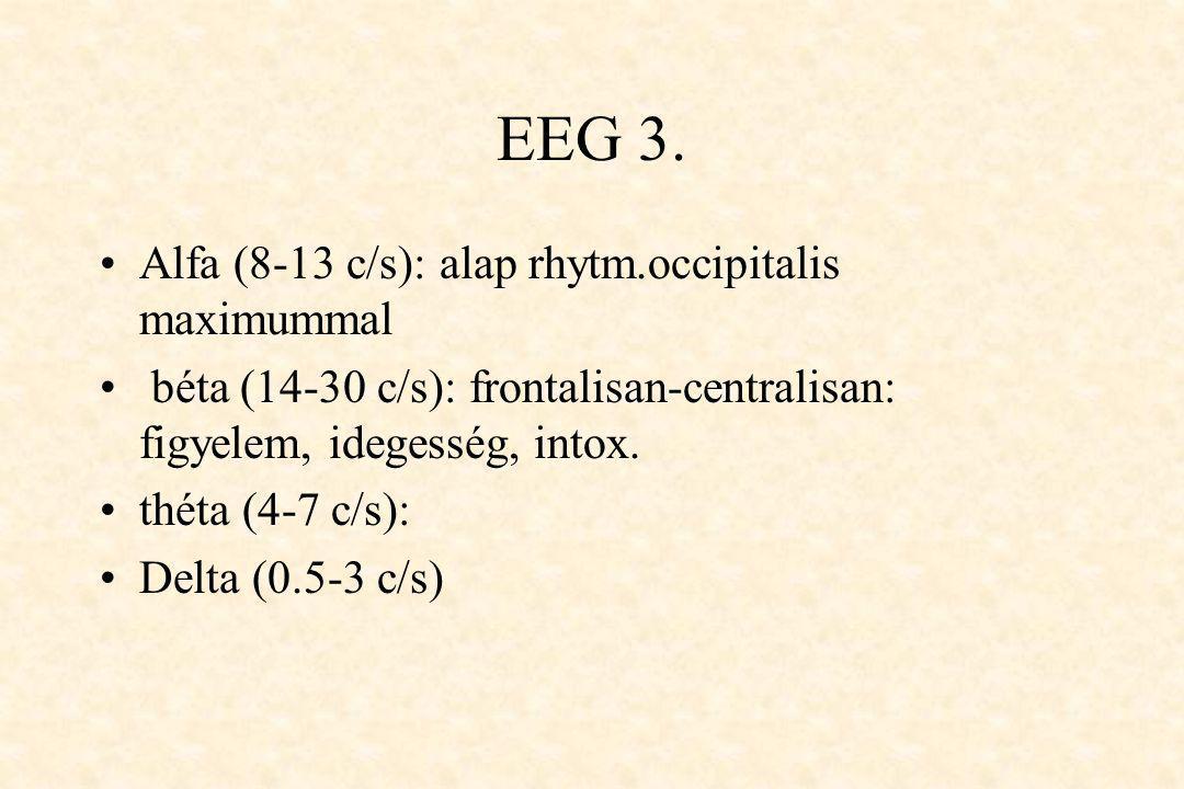 EEG 3. Alfa (8-13 c/s): alap rhytm.occipitalis maximummal