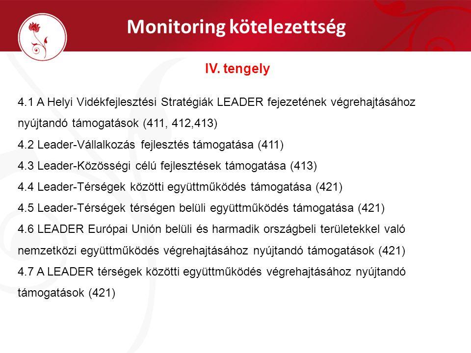 Monitoring kötelezettség