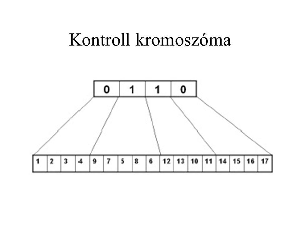 Kontroll kromoszóma
