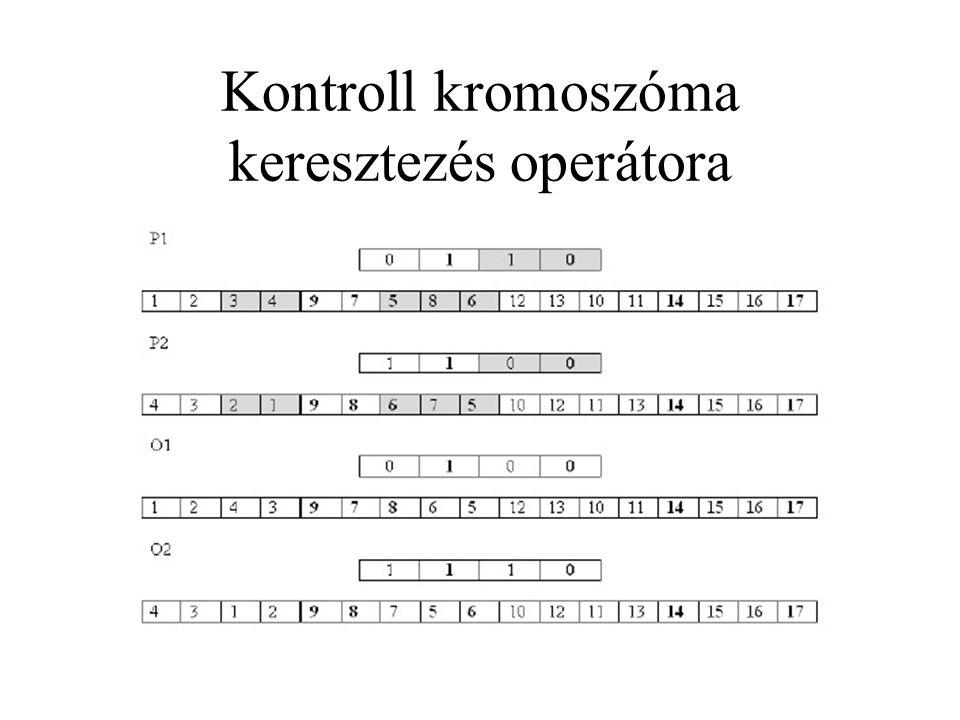 Kontroll kromoszóma keresztezés operátora