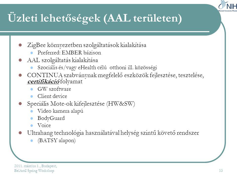 Üzleti lehetőségek (AAL területen)