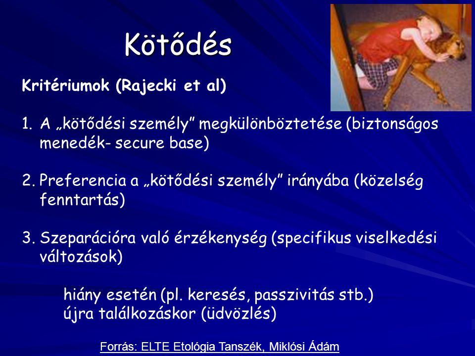 Kötődés Kritériumok (Rajecki et al)