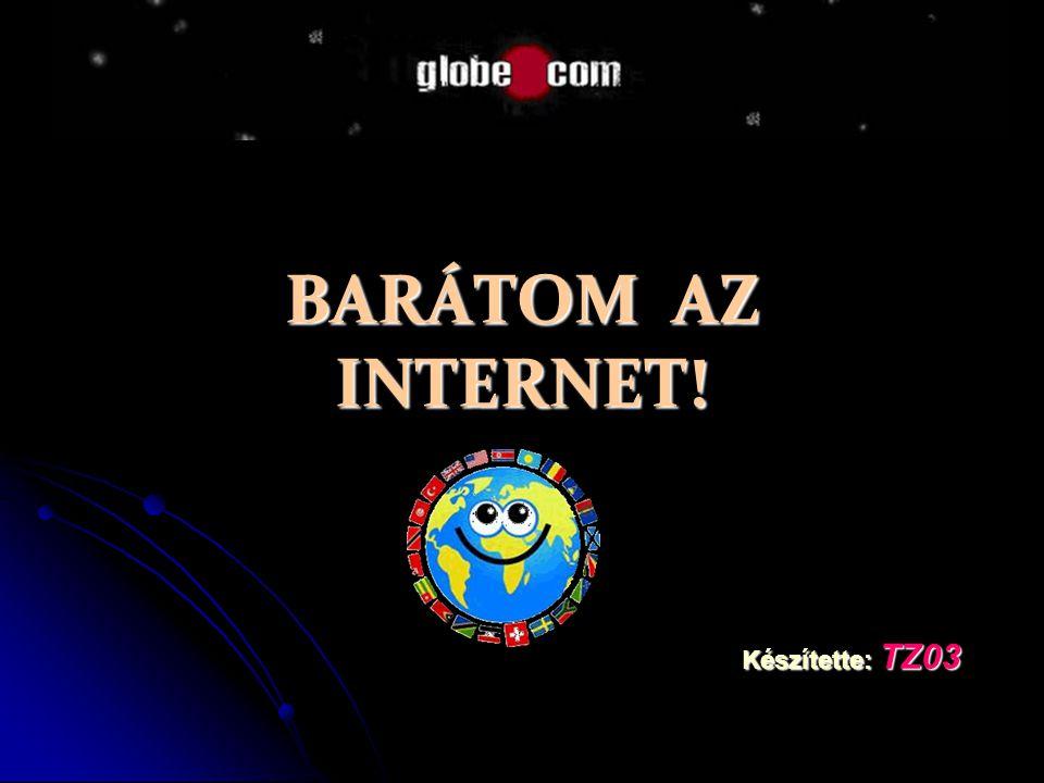 BARÁTOM AZ INTERNET! Készítette: TZ03