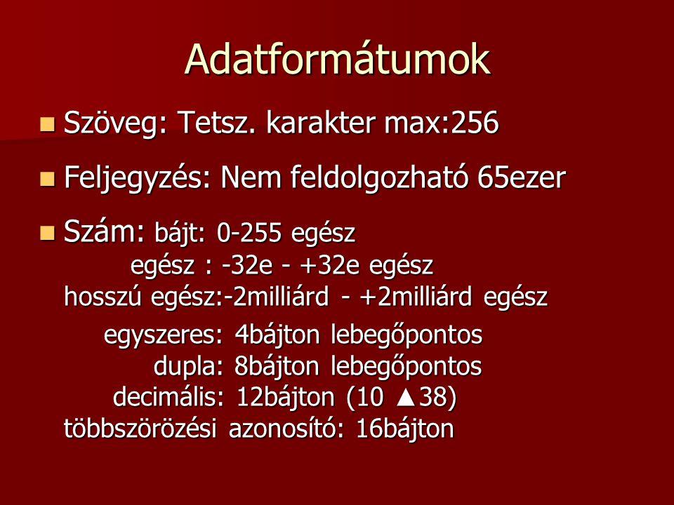 Adatformátumok Szöveg: Tetsz. karakter max:256
