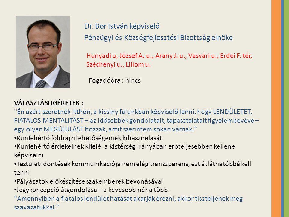 Dr. Bor István képviselő