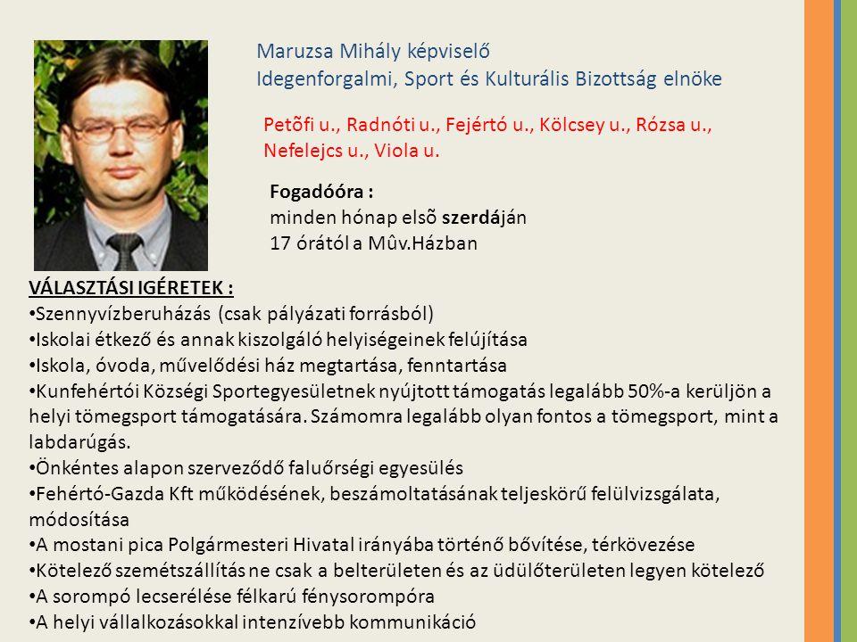 Maruzsa Mihály képviselő