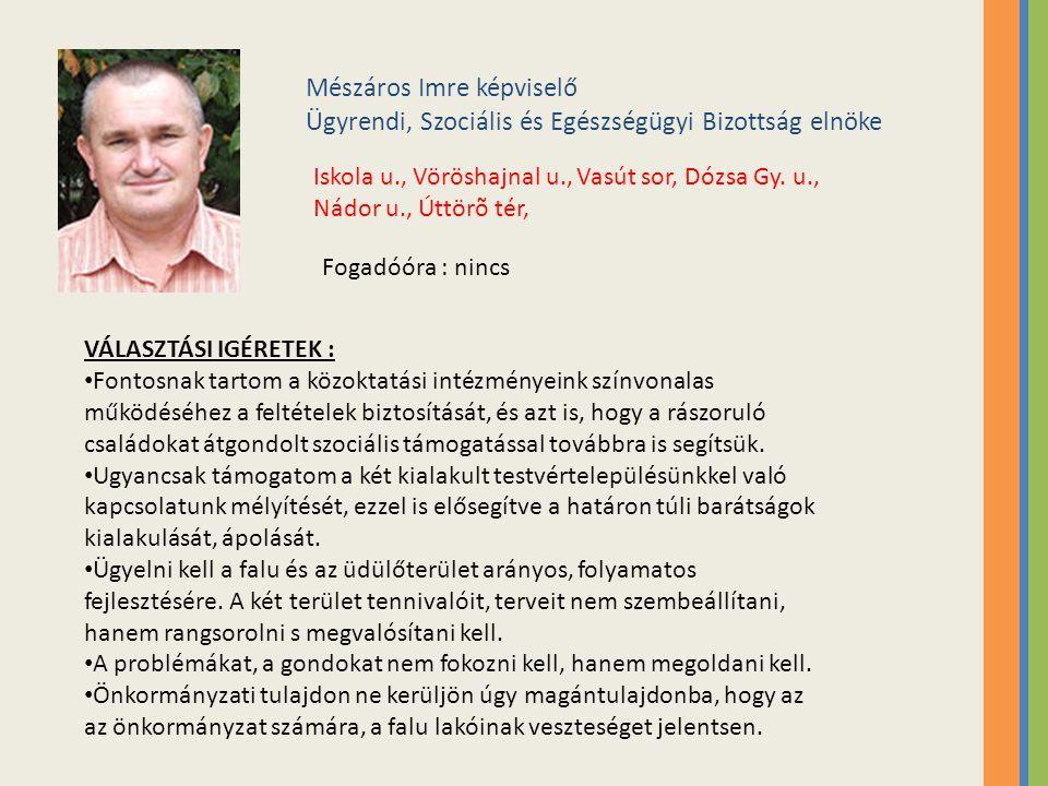 Mészáros Imre képviselő