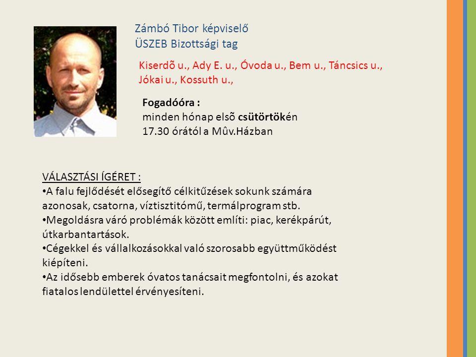 Zámbó Tibor képviselő ÜSZEB Bizottsági tag