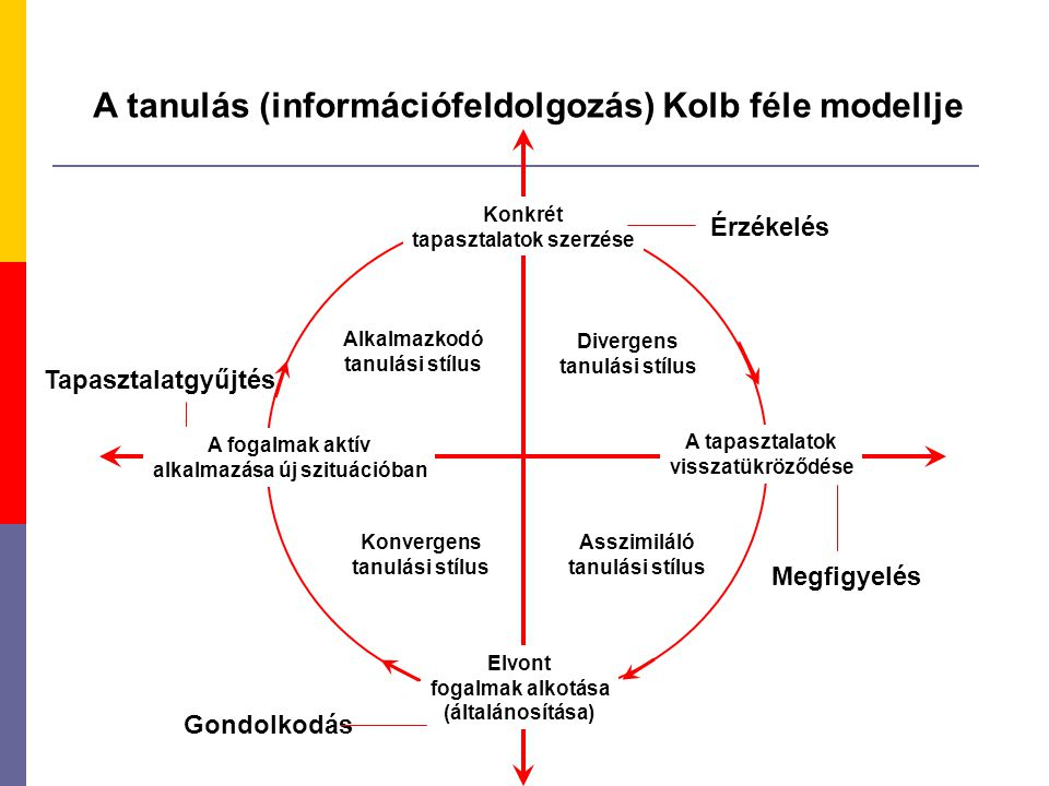 A tanulás (információfeldolgozás) Kolb féle modellje